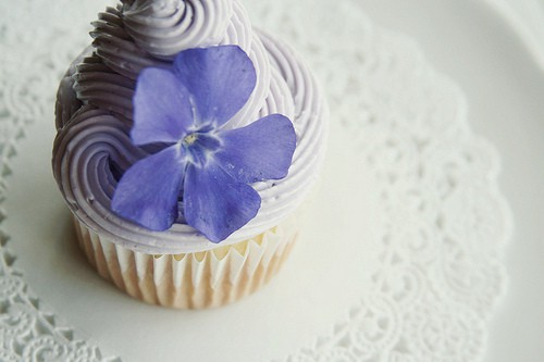 Tips for taking Beautiful Cupcake Photos | JavaCupcake.com