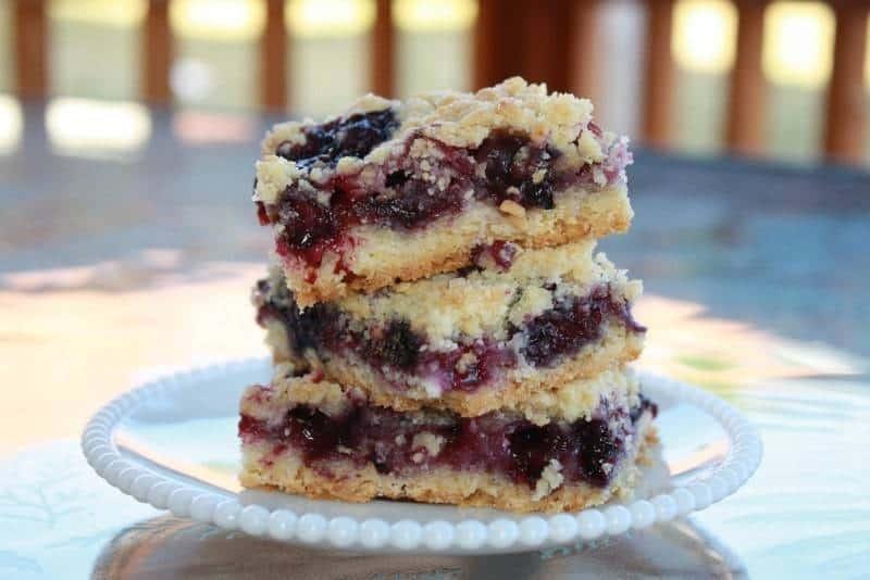 Blueberry Crumb Bars | JavaCupcake.com