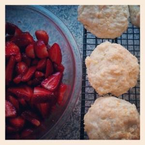 Strawberry Shortcake | JavaCupcake.com