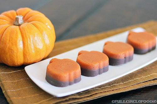 10 Things I Loved This Week   Pumpkin Edition | JavaCupcake.com