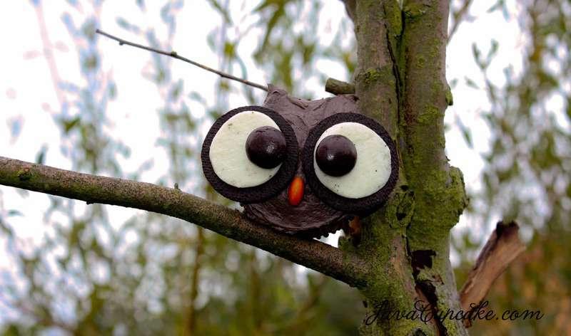 Dark Chocolate Pumpkin Spice Cupcakes and an Owl Tutorial