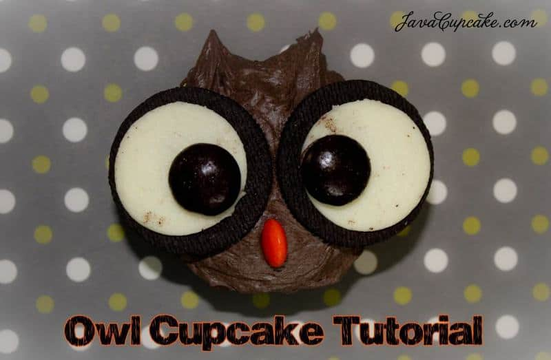 Dark Chocolate Pumpkin Spice Cupcakes and an Owl Tutorial | JavaCupcake.com