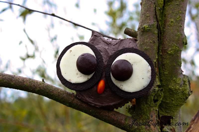 Dark Chocolate Spiced Pumpkin Owl Cupcakes by JavaCupcake