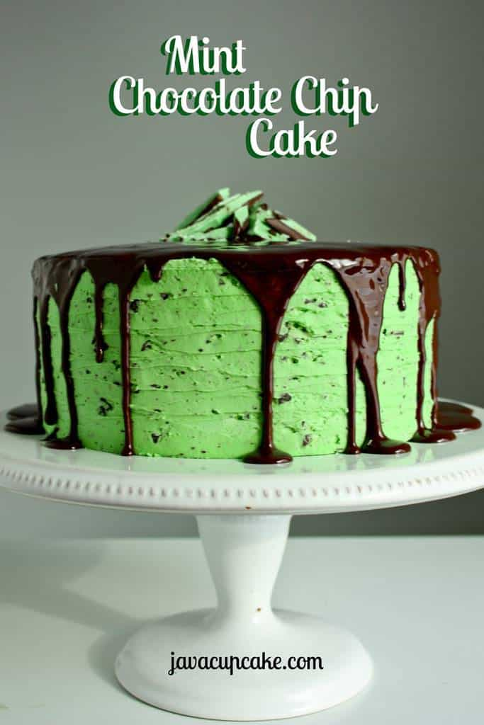 Mint Chocolate Chip Cake by JavaCupcake.com