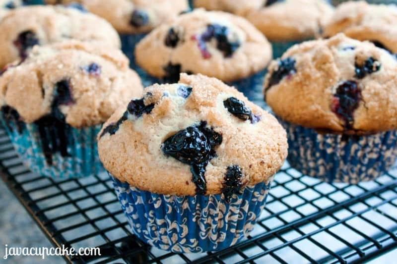 Jumbo Blueberry Muffins   JavaCupcake.com