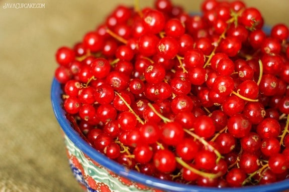 The History of Red Currants plus a tutorial on how to destem them. #RedCurrantWeek | JavaCupcake.com
