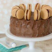Red Velvet Mocha Macaron Cake