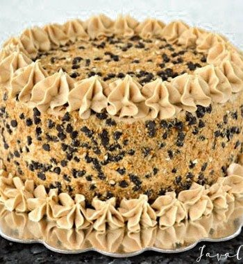 Chocolate Beer & Pretzel Cake | JavaCupcake.com
