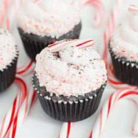Candy Cane Oreo Cupcakes