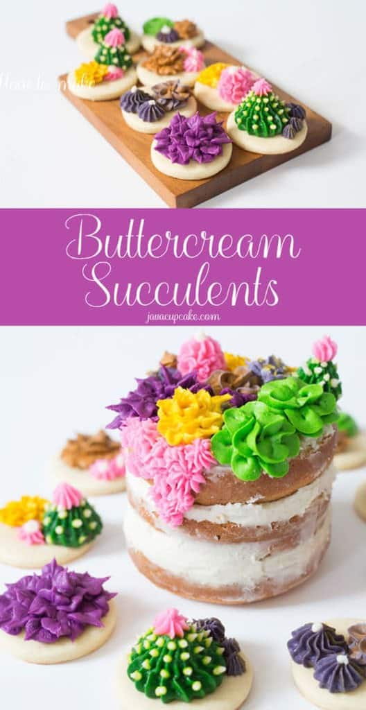 How to make Buttercream Succulents | javacupcake.com