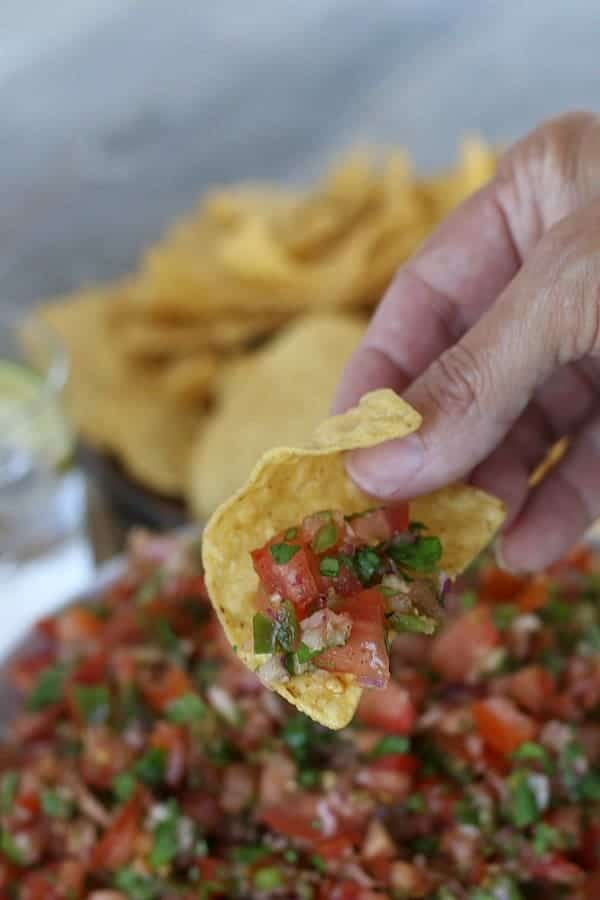 chip with homemade tomato salsa